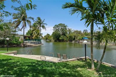 Coral Gables, South Miami Single Family Home For Sale: 6201 SW 63rd Ct
