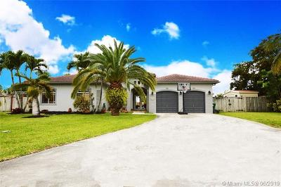 Miami-Dade County Single Family Home For Sale: 21164 SW 128th Pl