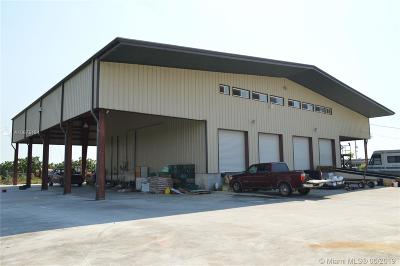 Homestead Commercial For Sale: 21100 SW 312th St