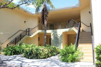 Fort Lauderdale Rental For Rent: 2445 SW 18th Terrace #710