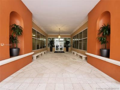 Coral Gables Rental For Rent: 357 Almeria Ave #1004