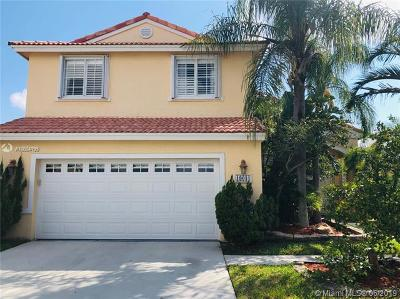 Pembroke Pines Single Family Home For Sale: 19031 NW 12th St