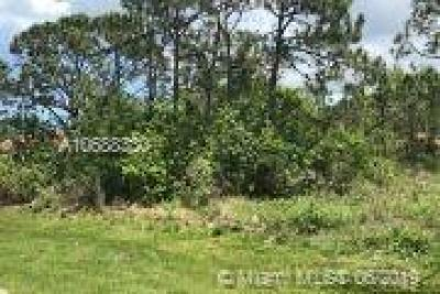 Residential Lots & Land For Sale: 248 SW Paar Dr