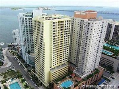 The Sail Condo, The Sail On Brickell Rental For Rent: 170 SE 14th St #1405