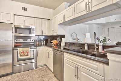 Sunny Isles Beach Condo For Sale: 17150 N Bay Rd #2320