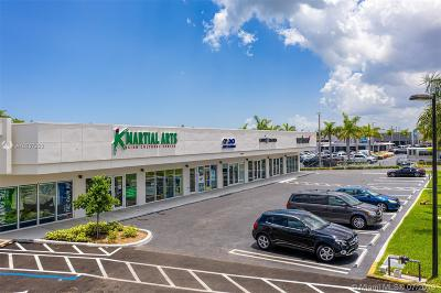 Palmetto Bay Commercial For Sale: 15365 S Dixie Hwy