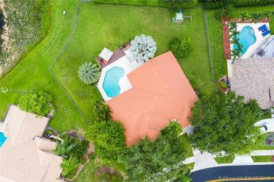 Weston Single Family Home For Sale: 420 Sabal Way