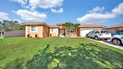 Miami Single Family Home For Sale: 20534 SW 133rd Ave