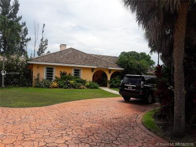 Palmetto Bay Single Family Home For Sale: 14841 SW 69th Ct