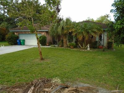 Coral Springs Single Family Home For Sale: 3803 NW 69th Ter