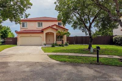 Cutler Bay Single Family Home For Sale: 21336 SW 89th Pl