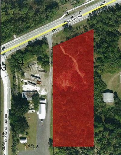 Stuart FL Residential Lots & Land For Sale: $300,000