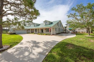 Palm City Single Family Home For Sale: 2701 SW San Antonio