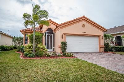 Port Saint Lucie FL Single Family Home For Sale: $249,999