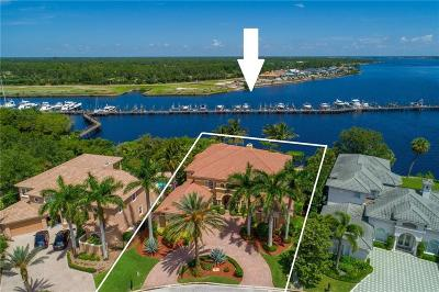 Palm City Single Family Home For Sale: 238 SW Palm Cove Drive