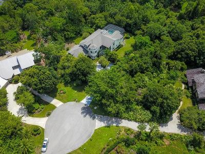 Palm City Single Family Home For Sale: 2000 SW Racquet Club Drive