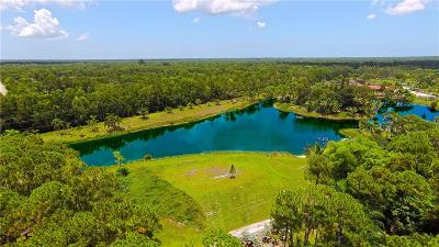 Palm Beach County Single Family Home For Sale: 13255 Running Water Road