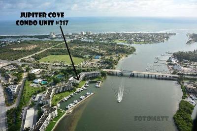 Condo Closed: 1748 Jupiter Cove Drive #317