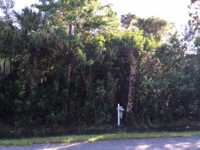 Residential Lots & Land Sold: 00 Palmetto Drive