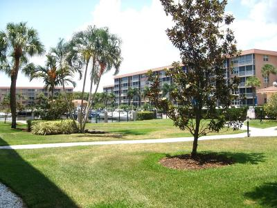 Delray Beach Condo For Sale: 910 Dogwood Drive #146