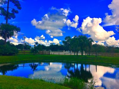 Palm Beach County Single Family Home Contingent: 1363 F Road