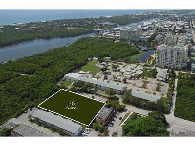 Boynton Beach Residential Lots & Land For Sale: 633 NE 6th Avenue