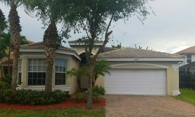 Greenacres Single Family Home For Sale: 5099 Bright Galaxy Lane