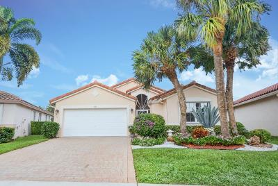Boynton Beach Single Family Home Contingent: 7317 Haviland Circle