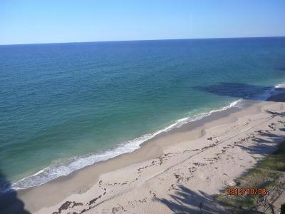 Singer Island Condo For Sale: 5200 Ocean Drive #1002
