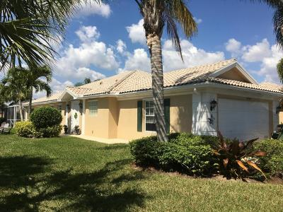 Port Saint Lucie Single Family Home For Sale: 10784 SW Hartwick Drive