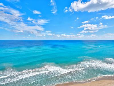 Singer Island Rental For Rent: 5310 Ocean Drive #1101