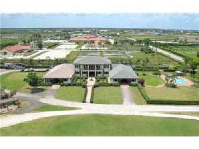 Palm Beach County Rental For Rent: 14710 Palm Beach Point Boulevard