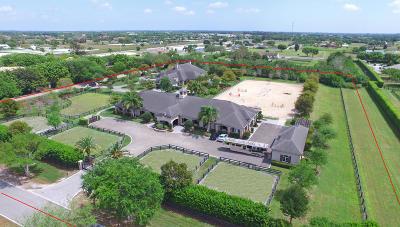 Palm Beach Point Single Family Home For Sale: 15490 Palma Lane