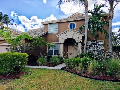 Broward County, Palm Beach County Single Family Home For Sale: 22780 Orchid Island Drive