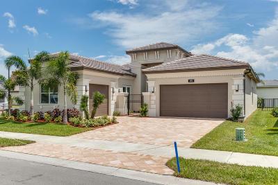 Boynton Beach Single Family Home For Sale: 8838 Golden Mountain Circle