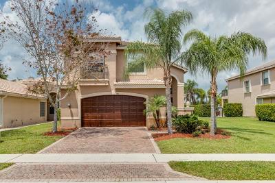 Boynton Beach Single Family Home For Sale: 11431 Majestic Acres Terrace