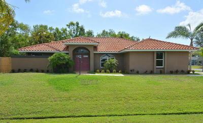 Port Saint Lucie Single Family Home For Sale: 2901 SE Lander Avenue