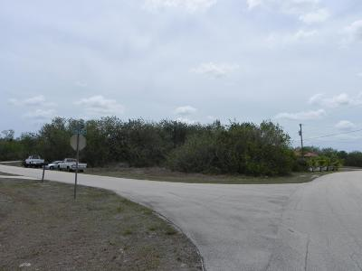 Residential Lots & Land Sold: 666 SW Millard Drive