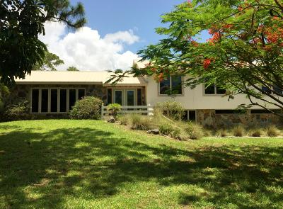Palm Beach Gardens Single Family Home For Sale: 8295 S Elizabeth Avenue