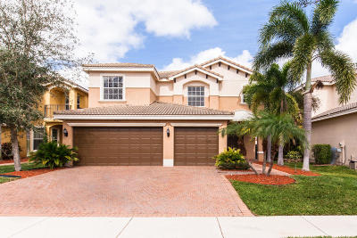 Broward County, Palm Beach County Single Family Home For Sale: 7901 Emerald Winds Circle