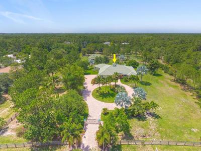Palm Beach Gardens Single Family Home For Sale: 12956 Mallard Creek Drive