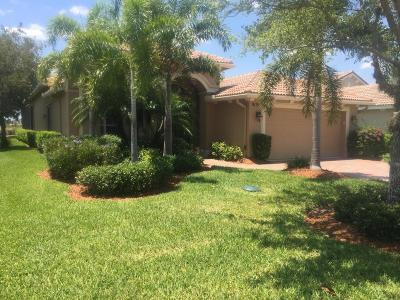 Port Saint Lucie Single Family Home For Sale: 9119 SW Champions Way