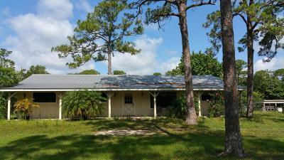 Jupiter Single Family Home For Sale: 16849 Haynie Lane