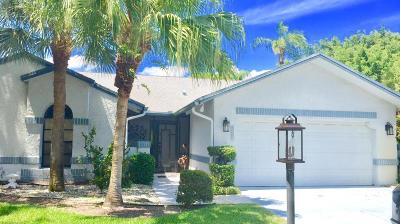 Delray Beach Single Family Home For Sale: 16713 Willow Creek Drive