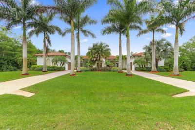 Palm Beach Gardens Single Family Home For Sale: 15655 77th Trail