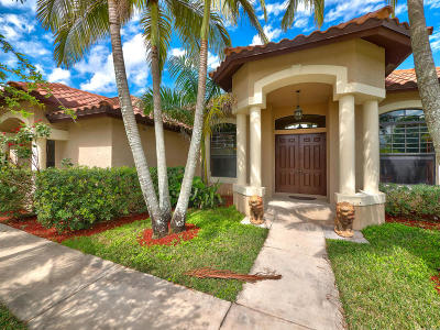 Loxahatchee Groves Single Family Home For Sale: 13481 Collecting Canal Road