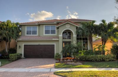 Delray Beach Single Family Home Contingent: 4784 Modern Drive
