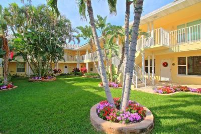 Del Harbour Condo Condo For Sale: 1820 S Ocean Boulevard #1d