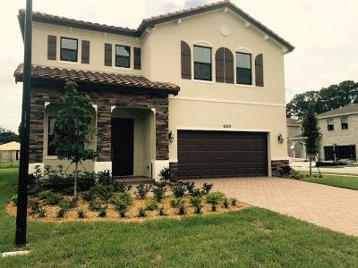 Greenacres Single Family Home For Sale: 6029 Night Heron Court
