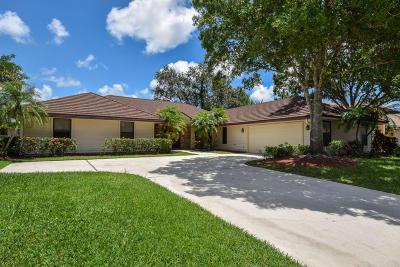 Palm Beach Gardens Single Family Home For Sale: 13 Alnwick Road